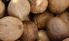 India Nutmeg